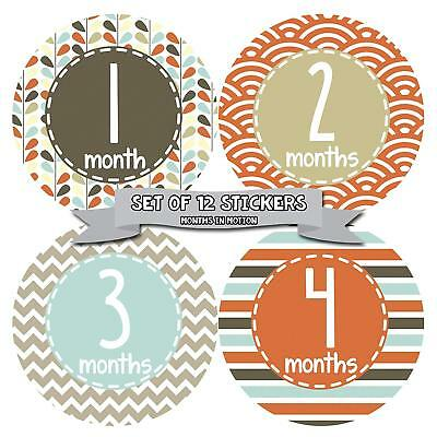 Months in Motion #379 Monthly Baby Stickers Baby Boy Months 1-12 Milestone