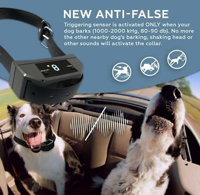 Electric Anti No Barking Collar Shock Dog Bark Collar Waterproof Rechargeable US