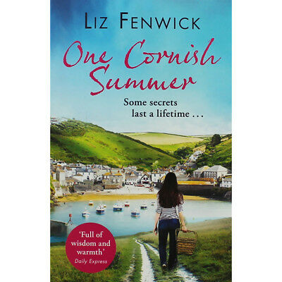 One Cornish Summer by Liz Fenwick (Paperback), Fiction Books, Brand New