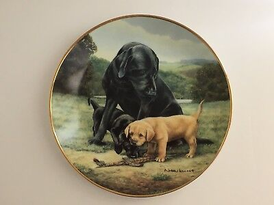 "The Franklin Mint Heirloom Black Lab Spring Training 8"" Collectors Plate"