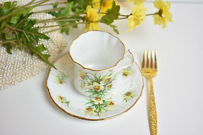 Hammersley Yellow Jonquils Old England Fine Bone China Tea Cup and Saucer