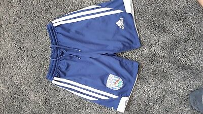 Boys West Brom Football Shorts Size Youth Small