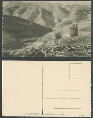 Portugal Old Postcard A View in The Douro, Hills Panorama, Sandeman & Co. Oporto