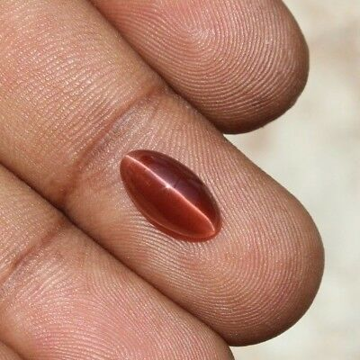 2.85 Ct Natural spectrolite cats eye brown red marquise cabochon loose gemstones