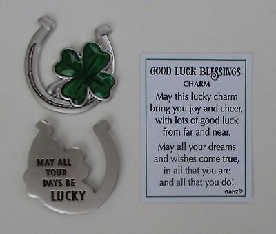 aa May all your days be lucky GOOD LUCK BLESSINGS Pocket token charm irish ganz