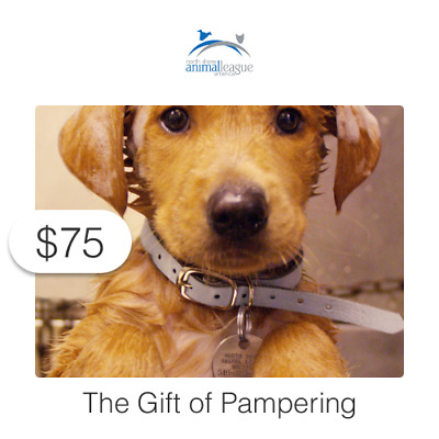 $75 Charitable Donation For: The Gift of Pampering