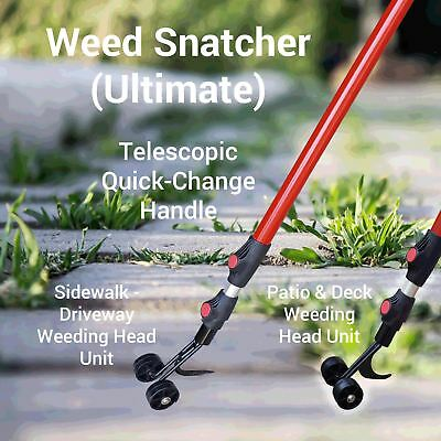 THE WEED SNATCHER, Crack and Crevice Weeding Tool