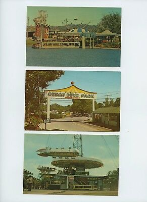Five (5) Vintage Postcards from Beech Bend Park (Bowling Green, KY)