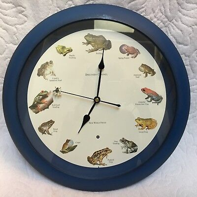 """WORKING RARE New World Frogs The Discovery Channel 13"""" Inch Frog Clock Toad"""