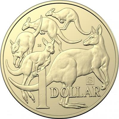 $1 one dollar coin 2019 - MOB OF ROOS - 'S' mint mark UNC RAM Treasure Hunt Rare
