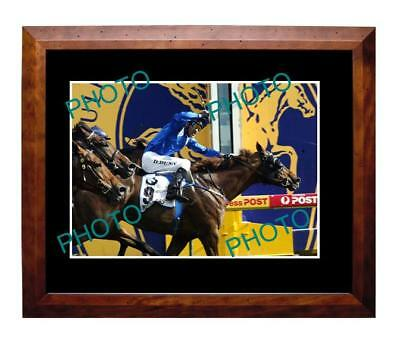 Tawqeet 2006 Horse Racing Caulfield Cup Win Large A3 Photo