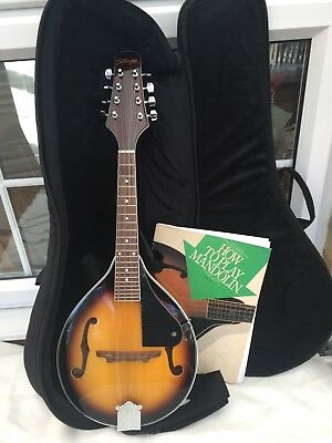 Mandolin Stagg M40S. With soft case.Hand made. Tuition book. Excellent condition