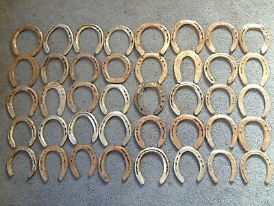 40 Used Rustic & Refurbished  Metal Horse Shoes w/ Nails Pulled & Some Cleaned