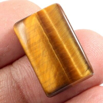 100%Natural Tiger's Eye Cushion Cabochon Gemstone yellow shine 22.75 cts