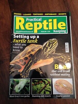 Practical Reptile Keeping Magazine - Jan 2011 - Setting Up A Turtle Tank