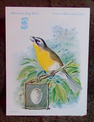 1929 Singer Sewing Machines American Song Birds Series Yellow Breasted Chat