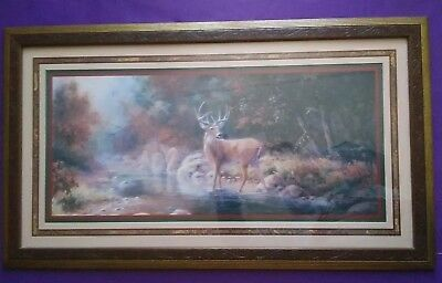 Home Interiors Print Buck Deer Creek Woods Fall Season Color Ornate Frame Homco