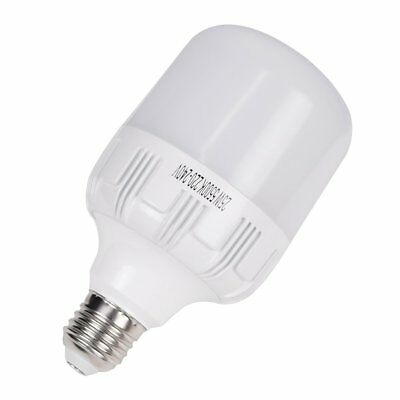 Daylight 25W Output 5500K LED Photo Light Bulb (Equal to 45W Incandescent Lamp)
