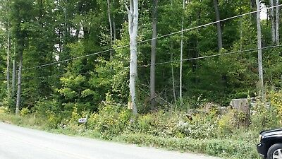 1.07 Acre Wooded Lot