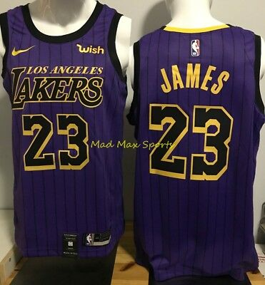premium selection d78b0 d39f5 LEBRON JAMES LOS Angeles LAKERS Nike WISH Purple CITY EDITION Swingman  Jersey