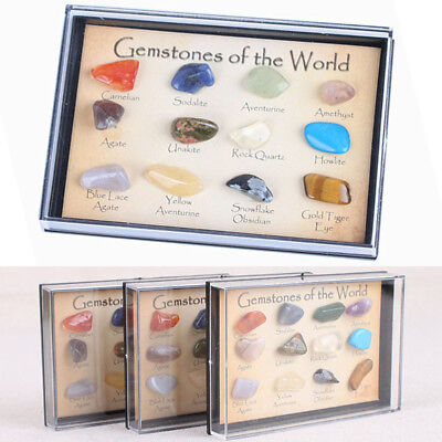 12pcs Mini Mixed Gems Crystals Natural Mineral Ore Specimens Collection Gift USA