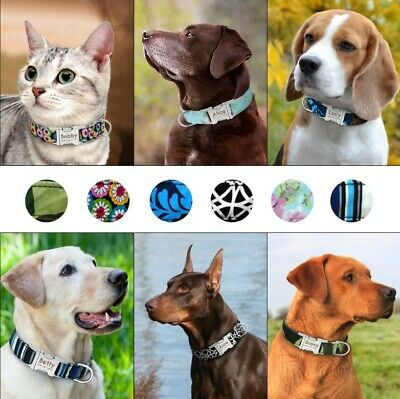 Personalized Dog Collar Custom Nameplate Engraved Puppy Cat ID Collar Tag S M L