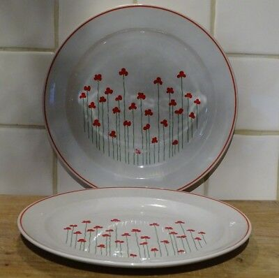 Pair of Wade Royal Victoria Pottery Dinner Plates in Poppies Pattern