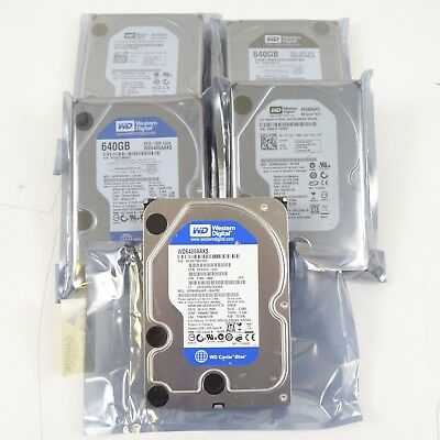 """Lot of 5) WD Mixed Model SATA 640GB 3.5"""" Desktop Hard Drives Working Clean Wiped"""