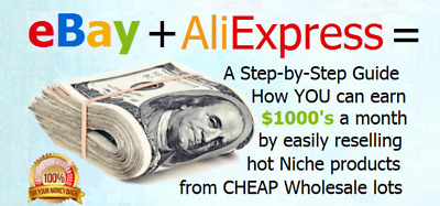 "Earn Money Online with eBay + Aliexpress Dropshipping Book ""Be Your Own Boss"""