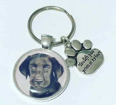 DOG personalised photo keyring you left paw prints on my heart  Dog keyring