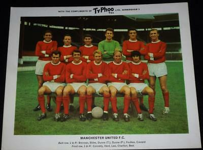 Manchester United team large Typhoo card (George Best etc)