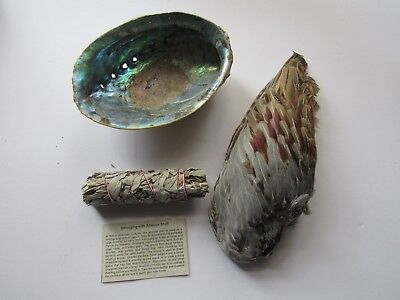Smudge Kit Pheasant Feather  Abalone Shell Sage Smudge Smudging Tribal Gift Set