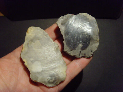 Lower Palaeolithic - Early Acheulean pebble scrapers -  UK C.500,000+ BP