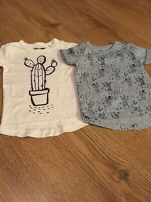 Next Cactus Tshirts. Never Worn 3-6 Months