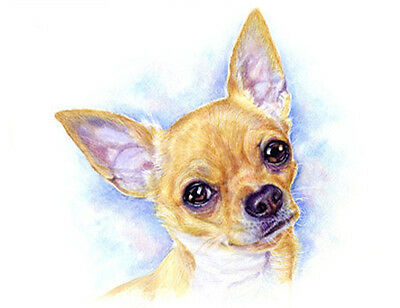 artav Chihuahua 03 Art Print From Watercolor Painting