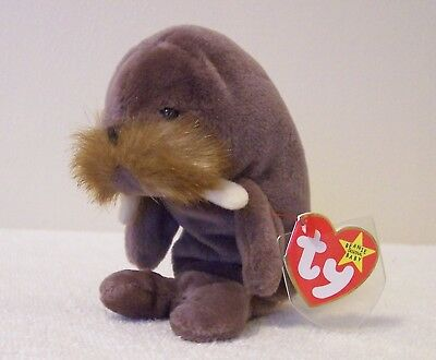 """Ty Beanie Babies  Collection   """"jolly""""   Walrus"""