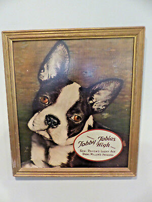 Vintage AKC Boston Terrier Advertisement Sign 1947 Indiana American Kennel Club