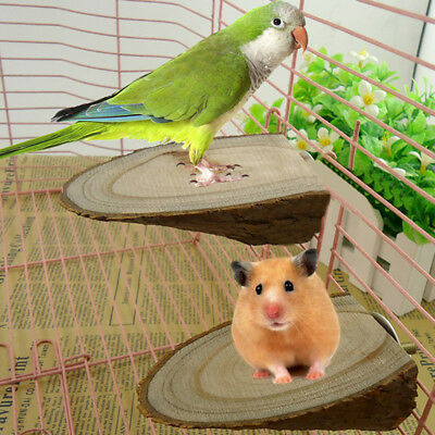 LX_ Wooden Mini Parrot Bird Cage Perches Stand Platform Pet Budgie Toy Healthy