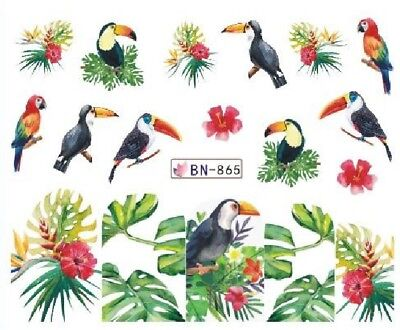 Nail Art Decals Transfers Stickers Flowers Toucans (BN865)