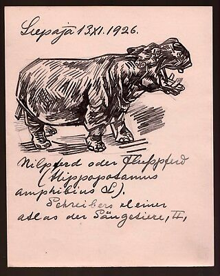 1926 Russian Art Sermoskin Ivan Ink on paper Original Drawing Hippopotamus