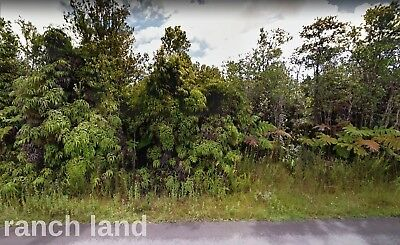 Owner Finance 1.1 ac Hawaii Ocean View lot, paved road, power, border State Park