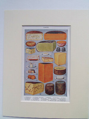 """MRS BEETONS CHEESE ANTIQUE PRINT DATED 1920 IN 10""""x8"""" MOUNT READY TO FRAME"""