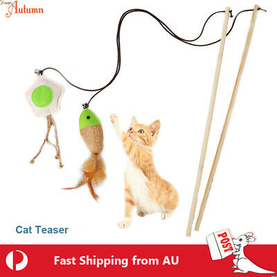 Cat  Play Toy Feather Teaser Wand Interactive Stick Kitten Pet Fun Fish