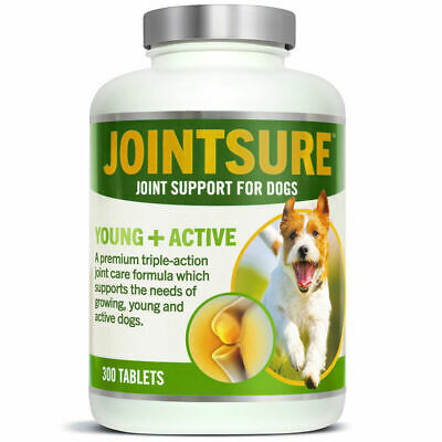 Glucosamine Complex for Dogs for Painful Joints | JOINTSURE Young + Active Tabs
