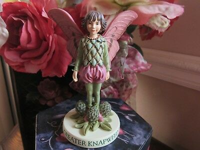 RETIRED! Cicely Mary Barker GREATER KNAPWEED Flower FAIRY Figurine On Base NEW