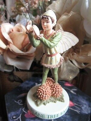 RETIRED! Cicely Mary Barker PLANE TREE FAIRY Flower Fairy Figurine On Base NEW!