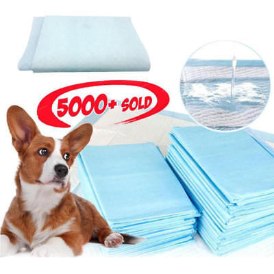 5x Indoor Pet Chien Chat des Tampons Absorbants Toilettes Pee de Formation Bleu