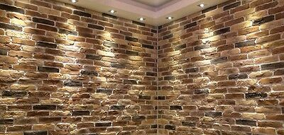 Autumn Blend Brick Slip/Brick Tile/Brick Cladding/Wall Tile SAMPLE
