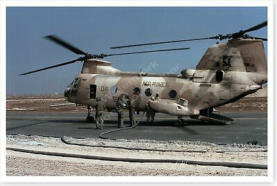 USMC Marine Corps CH-46E Sea Knight Helicopter Desert Storm 8 x 12 Photo