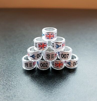 10 x Pigeon Rings 7mm - 2019 GB UK Flag Show Rings